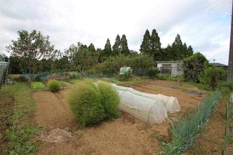 田舎暮らし 千葉 八街市 耕作中のかわいい家庭菜園付き!平成22年築の1DKコンパクト住宅